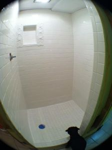shower tiles grouted